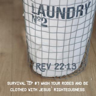 Tip 7 laundry